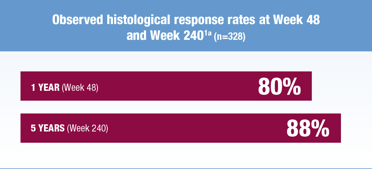 Observed histological response rates at Week 48 and Week 240